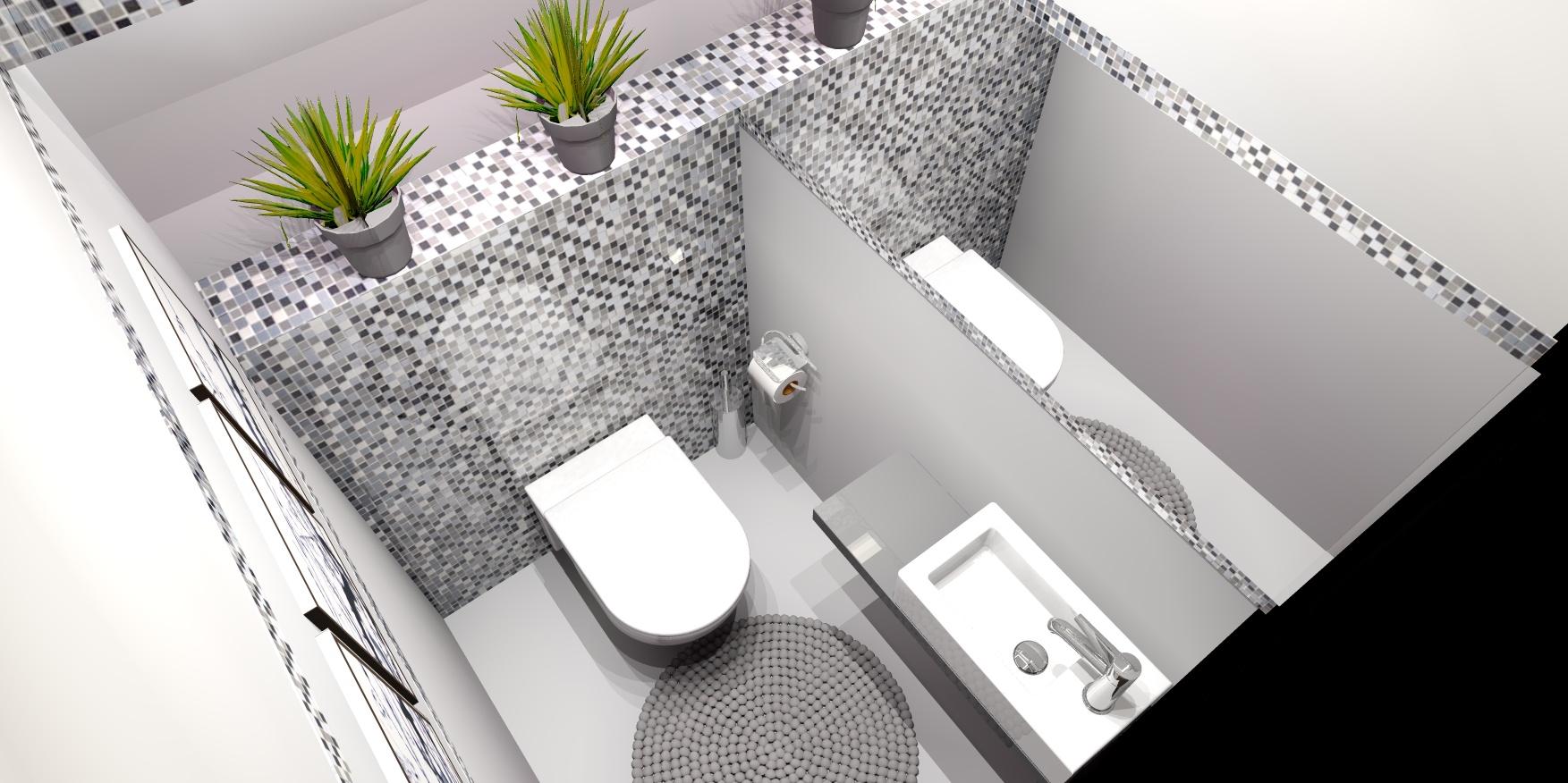 Toaleta w Kobyłce